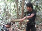 Menyejukan kepala daripada air akar kayu
